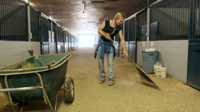 stable cleaning - part time worker stock videos & royalty-free footage