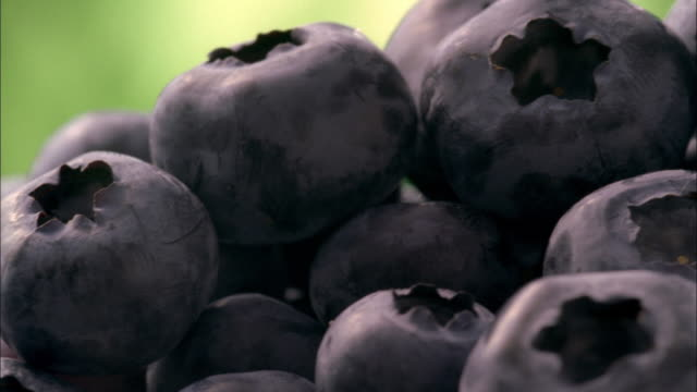 ecu, selective focus, pan, stack of blueberries  - blueberry stock videos and b-roll footage