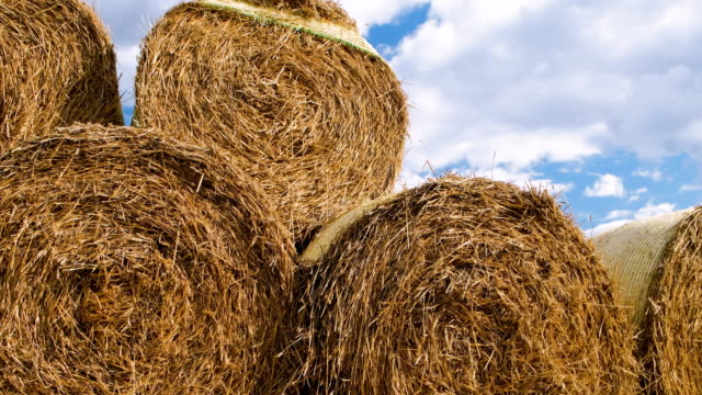 stack of hay bales on a cloudy sky background - hay stack stock videos & royalty-free footage