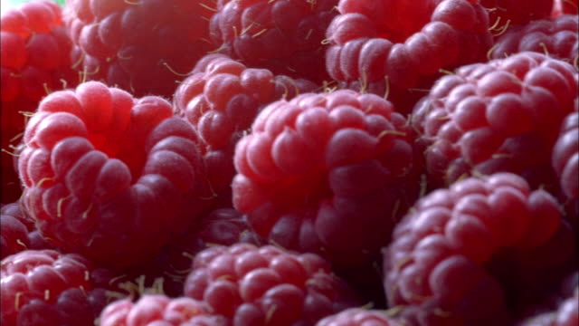 cu, selective focus, pan, stack of raspberries  - raspberry stock videos and b-roll footage