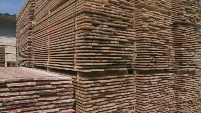 ms pan stack of timber planks in sawmill / trier, rhineland-palatinate, germany - bauholz stock-videos und b-roll-filmmaterial