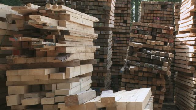 MS Stack of timbers in sawmill / Trier, Rhineland-Palatinate, Germany
