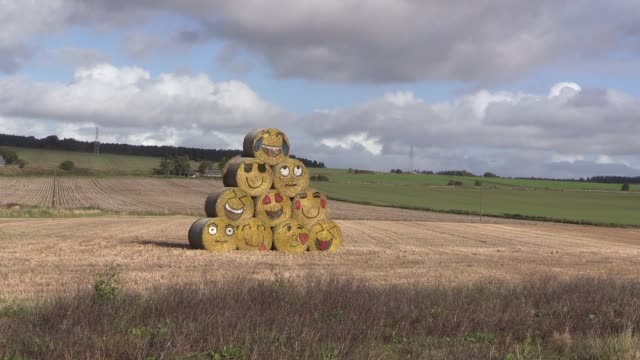 stacked in a field in scotland - emoticon stock videos and b-roll footage