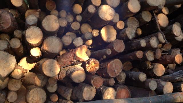 DS gestapelte Holzscheite