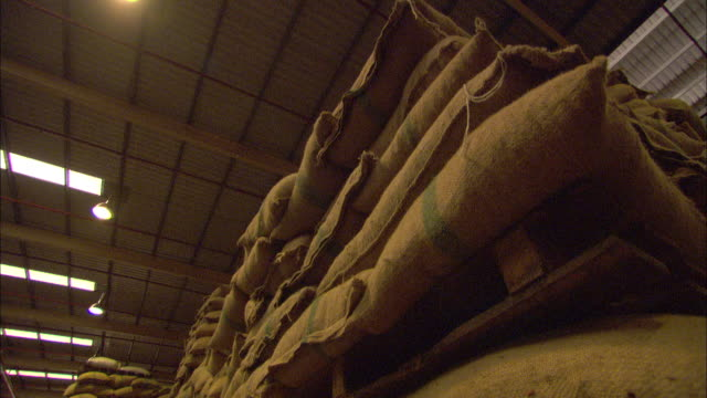 stacks of bagged cacao beans are stored at a chocolate factory. - 麻袋点の映像素材/bロール