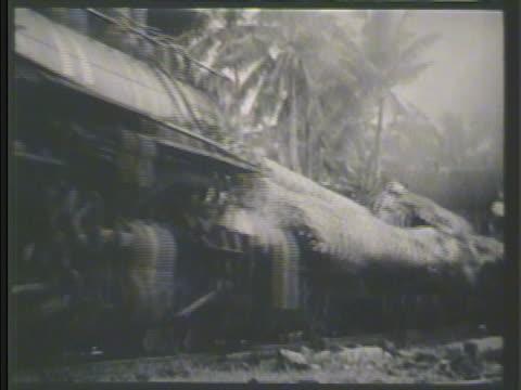 stacks of cut hardwood. w train pulling load of hardwood trees. vs filipino workers bundling & drying hemp fibers. - hardwood stock videos & royalty-free footage