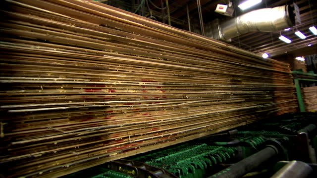 stacks of wood panels travel along a conveyor belt. - timber yard stock videos & royalty-free footage
