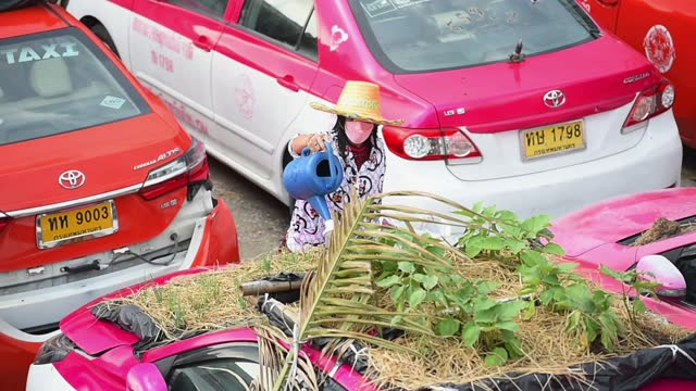 THA: Bangkok's Taxis Become Vegetable Garden to Fight COVID-19 Economic Crisis