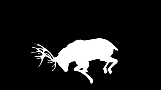 Stag Horn Silhouette (Loopable)