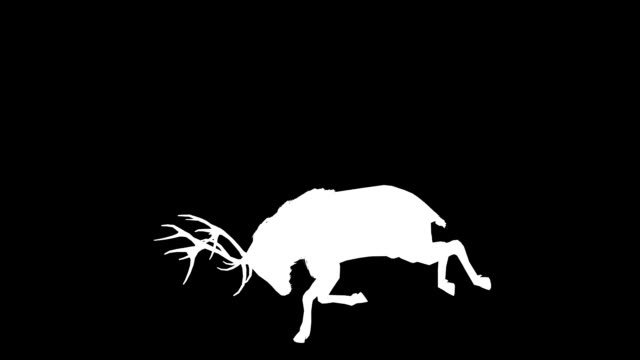 Stag Horn Silhouette