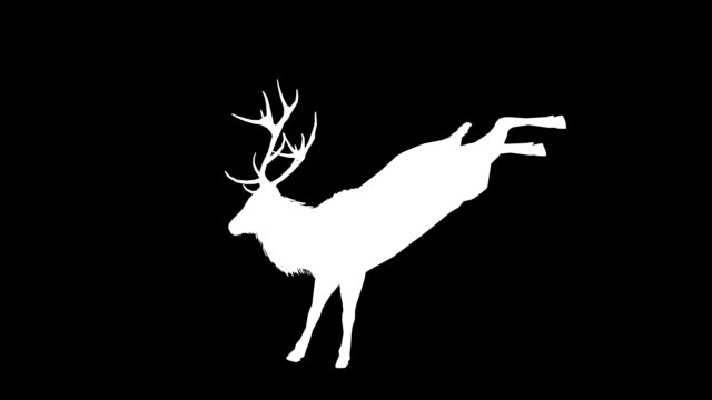 Stag Kick Silhouette (Loopable)