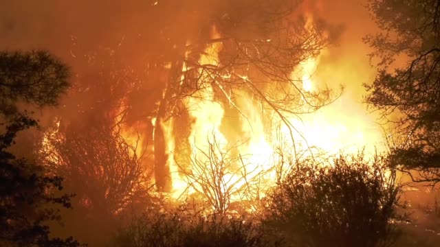 stagecoach fire in the south of havilah, ca, on august 4, 2020 and has burned 1,500 acres and is still zero percent contained. crews have issued new... - evacuazione video stock e b–roll