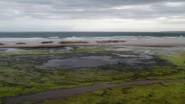 vídeos de stock e filmes b-roll de stagnant water in the estuary mouth - planície