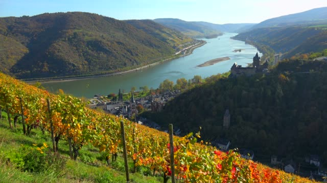 stockvideo's en b-roll-footage met stahleck castle and rhine river, bacharach, rhineland-palatinate, germany, europe - rond de 12e eeuw