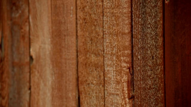 staining - wood stain stock videos & royalty-free footage