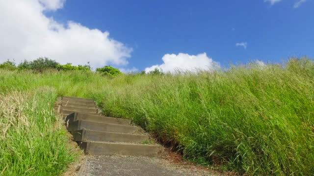 stairs take towards mt eden, auckland, new zealand. - ladder of success stock videos & royalty-free footage