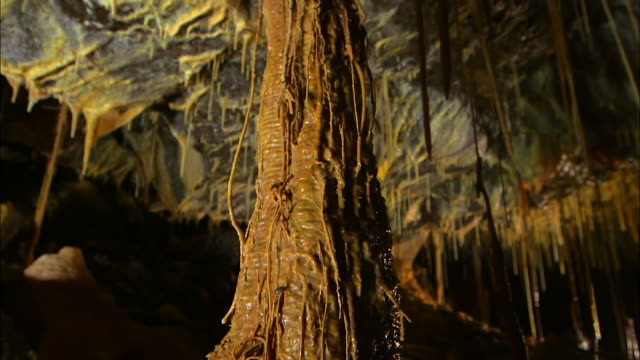 stalactites and tree root covered in calcium carbonate inside dangcheomul cave (unesco world natural heritage site) - calcium carbonate stock videos and b-roll footage