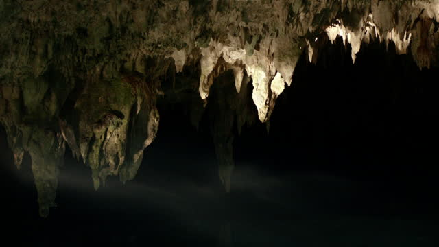 stalactites drip at cenote entrace, yucatan - rock formation stock videos & royalty-free footage