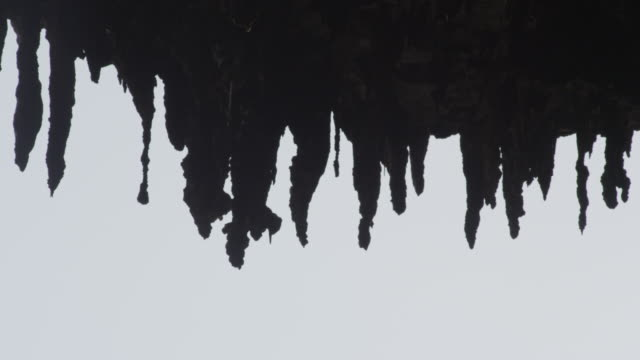vídeos de stock, filmes e b-roll de stalactites dripping with water, new caledonia, 2013 - stalactite