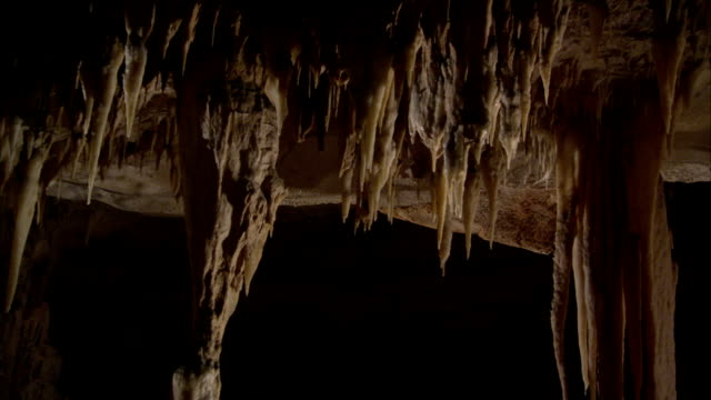 Stalactites form on the ceiling of a cave. Available in HD