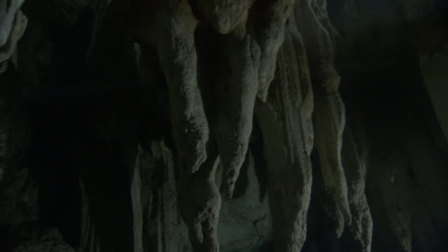 Stalactites hang from roof of underwater cave, Palau