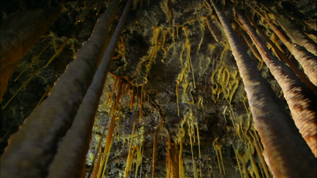 vídeos de stock, filmes e b-roll de stalactites hanging inside dangcheomul cave (unesco world natural heritage site), jeju island - low angle view
