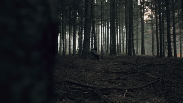"vídeos de stock, filmes e b-roll de ""pov stalker olhar jovem mulher perdida na floresta"" - esconder"
