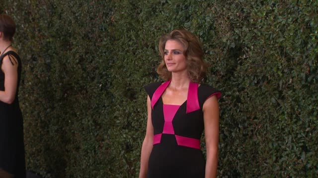 stana katic at 2014 writers guild awards arrivals at jw marriott los angeles at la live on in los angeles california - stana katic stock videos and b-roll footage