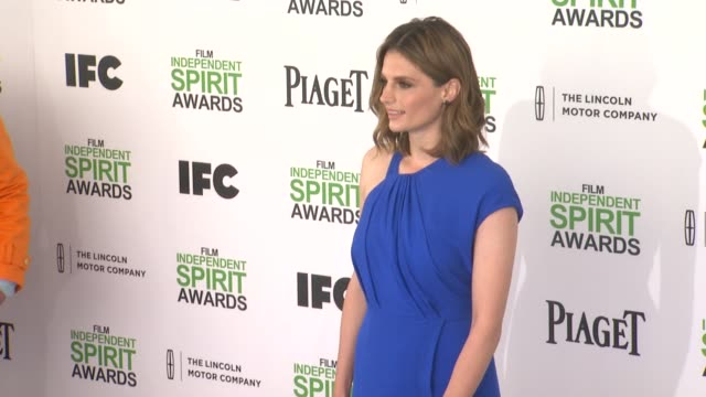 stana katic at the 2014 film independent spirit awards arrivals on march 01 2014 in santa monica california - stana katic stock videos and b-roll footage