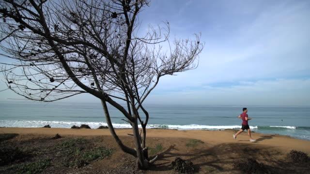 ws sm standing by the sea. - ランニングショートパンツ点の映像素材/bロール