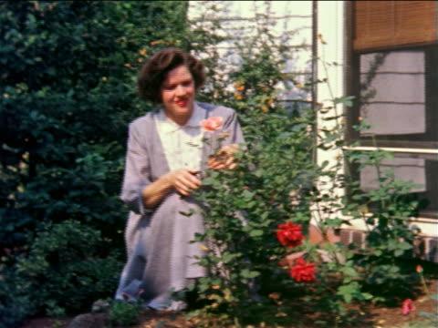 1959 standing woman pruning rose bush near house / philadelphia, pa / documentary - beskära bildbanksvideor och videomaterial från bakom kulisserna