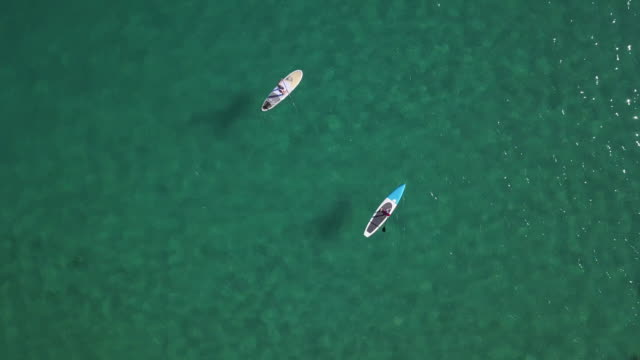 standup paddle boarders, noosa, queensland, australia - water sport stock videos & royalty-free footage
