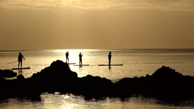 stand-up paddle boarding by sunrise on atlantic - portugal stock videos & royalty-free footage