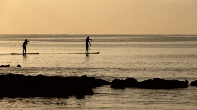 stand-up paddle boarding by sunrise on atlantic - algarve stock-videos und b-roll-filmmaterial