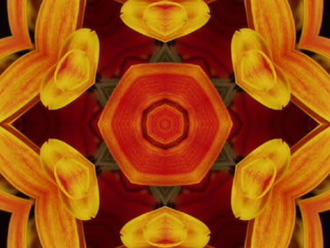 cu cgi star shaped red and yellow kaleidoscope pattern  - petal stock videos & royalty-free footage