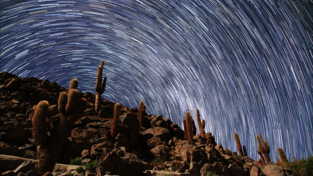 star trails and atacama desert cacti - san pedro de atacama stock videos & royalty-free footage