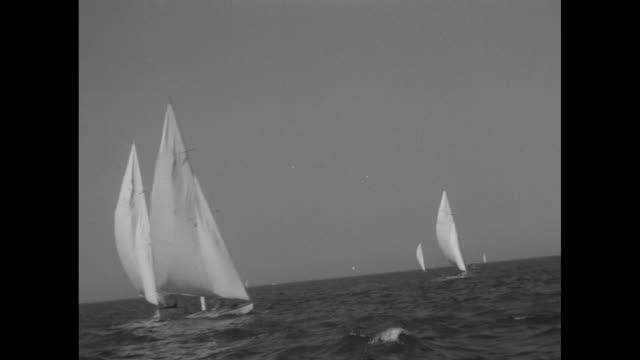 vs starclass yachts sailing in race chicago skyline in background / ms yacht coming toward camera other boats in distant background / ms tracking... - bobsleighing stock videos & royalty-free footage