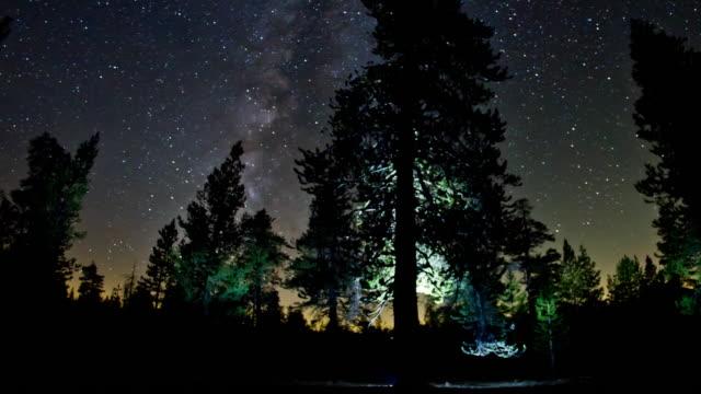 vídeos y material grabado en eventos de stock de contemplar las estrellas en el cielo nocturno - parque nacional de secoya