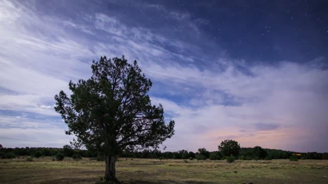 Starry Night Over Arizona Scrub - Time Lapse