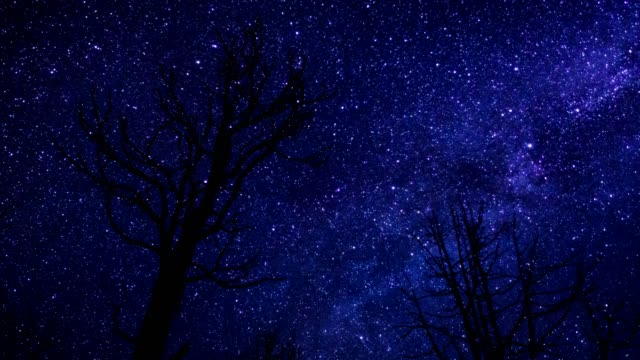 starry night sky time lapse - burnt stock videos & royalty-free footage
