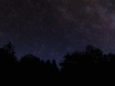 starry night with tree silhouette and meteor - star trail stock videos & royalty-free footage