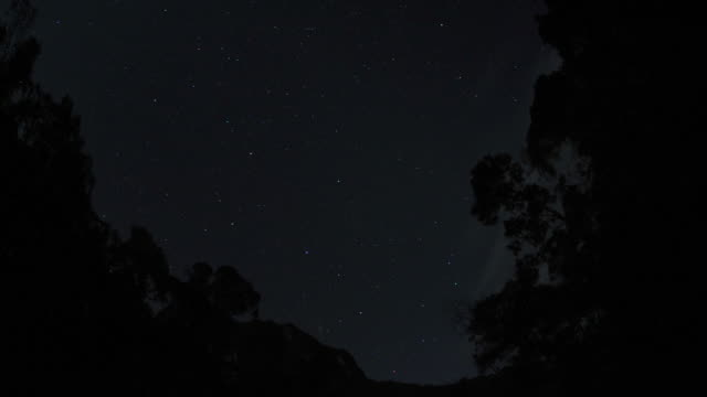 "vidéos et rushes de stars drift through night sky, marojejy, madagascar - ""bbc natural history"""