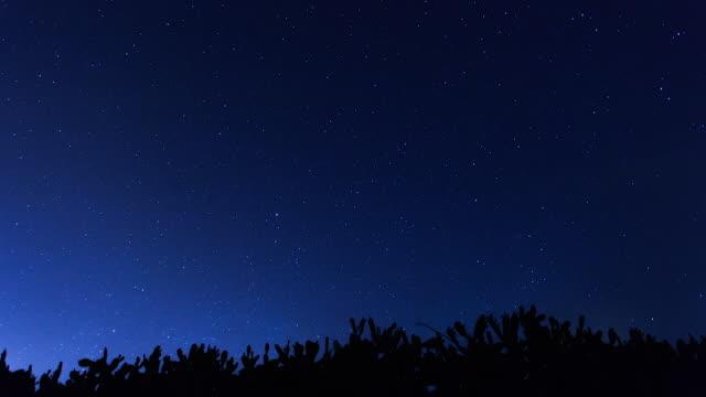 Stars moving in night sky
