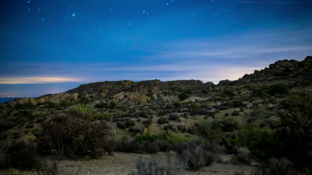 stars over joshua tree national park. - joshua tree national park stock videos & royalty-free footage