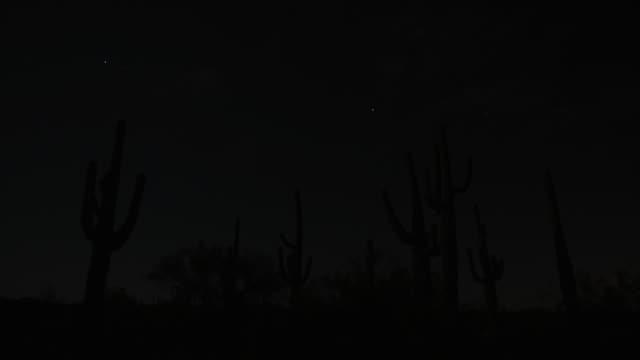 vidéos et rushes de stars shoot through the dark sky over saguaro cactus in the sonoran desert. available in hd. - météore