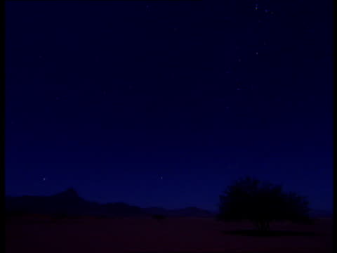 Stars twinkle in the sky over the desert.