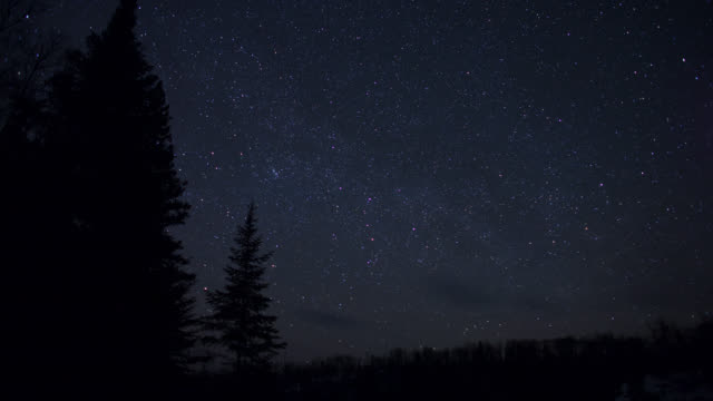 tl stars wheal in night sky over trees, minnesota, usa - astronomy stock videos & royalty-free footage