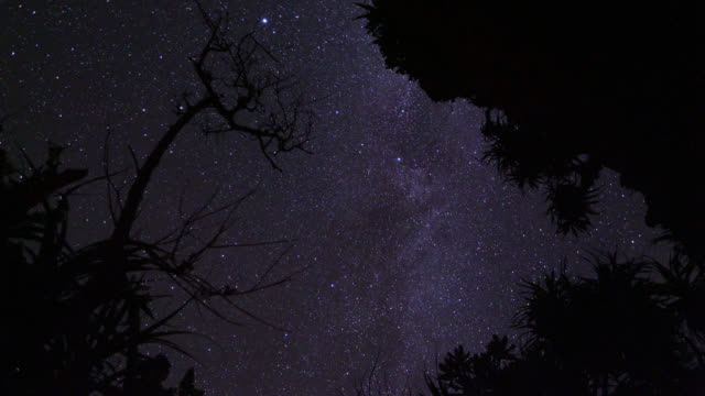 stars wheel overhead, japan. - astronomie stock-videos und b-roll-filmmaterial