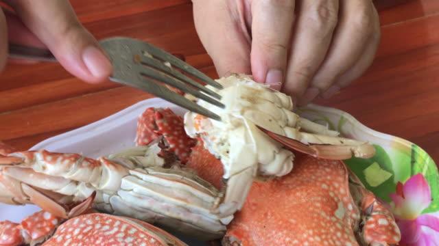 börja äta ben krabba, hua hin, thailand. - krabba bildbanksvideor och videomaterial från bakom kulisserna
