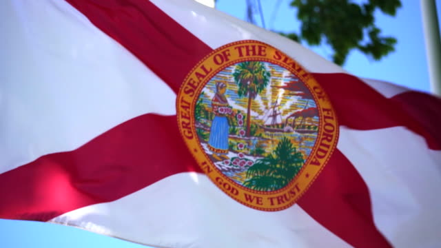 state flag of florida waving in the breeze - - jacksonville florida stock videos and b-roll footage
